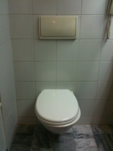 china toilet