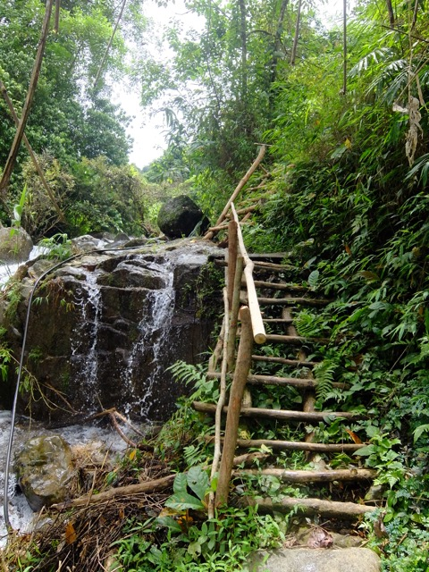 steps waterfall